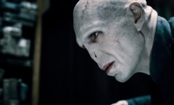Harry Potter and the Deathly Hallows Part 1: Lord Voldemort (Ralph Fiennes)